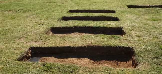 Cities urged to prepare mass graves as SA's Covid-19 death count rises
